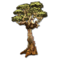 Prop-Medium desert thornleaf.png