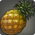Icone Ananas épineux.png