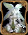 Carte Garuda.png