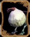 Carte Dodo.png