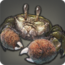 Icone Crabe à mitaines.png
