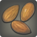 Icone Amandes.png