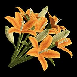 Icon props Theme Human Decorations Flowers LiliesBouquet01 Orange 256.png