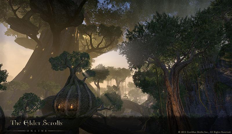 Bois de Graht.jpg