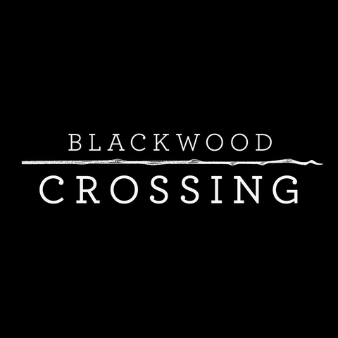 Blackwood Crossing - Blackwood Crossing, The Silver Case et Train Simulator live sur la JOL-TV