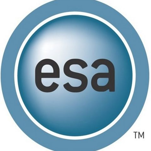 Entertainment Software Association - E3 2013 : les exposants « MMO »
