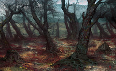 Forêt Rouge de Kara Korum