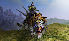 Paikang - Tigre