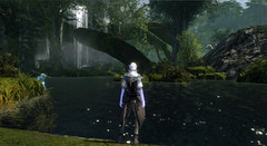 Jake Song détaille le gameplay d'ArcheAge
