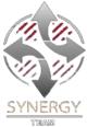 Logos des équipes finalistes de la WGL 2014 - Synergy