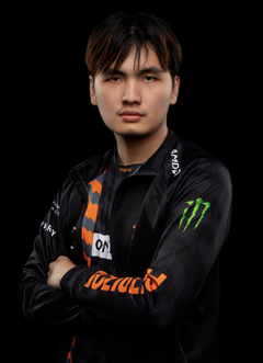 Fnatic 2019 iceiceice