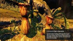 Écosystème Venus 1
