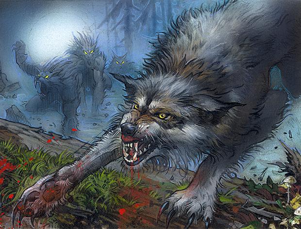 Illustration de l'Immerwolf