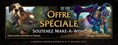 Offre Make a wish 2013
