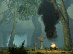 Caverne de la forêt mystique (Eveningstar)