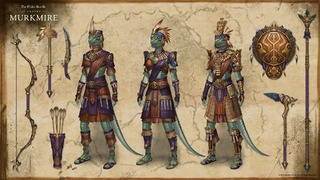 8920cdf5d9a45dbf85ea60075e40caf2_outfits-and-weapons-in-the-elder-argonian-style_wallpaper-1920x1080.jpg