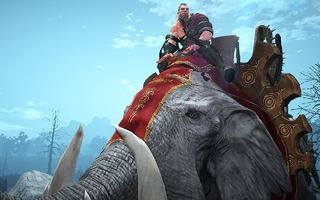 Monture : éléphant
