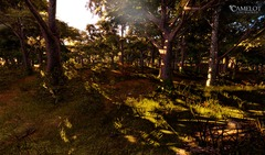 forest_deathmatch1
