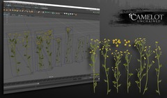 modeling_flower