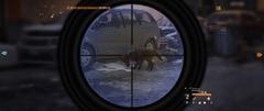 Le bon chasseur, c'est un gars qui a un fusil, il voit un truc qui bouge, il tire.