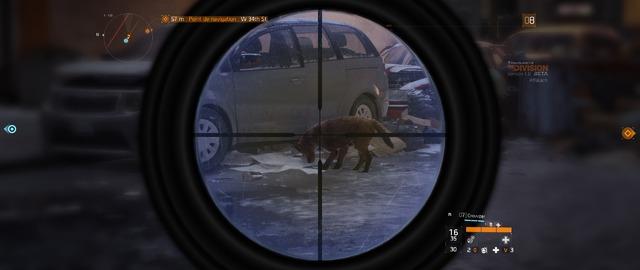 The Division (Bêta) - Animal errant