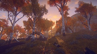 Nouveau biome de forêt de bouleau de Landmark