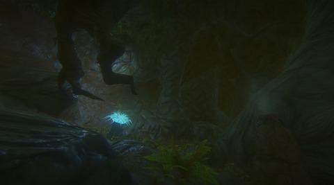 Les formes des grottes de Landmark seront plus variées