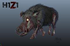 Halloween : porc zombie