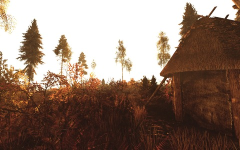 Life is Feudal: MMO - Interview communautaire (Guilde Vom Culm)