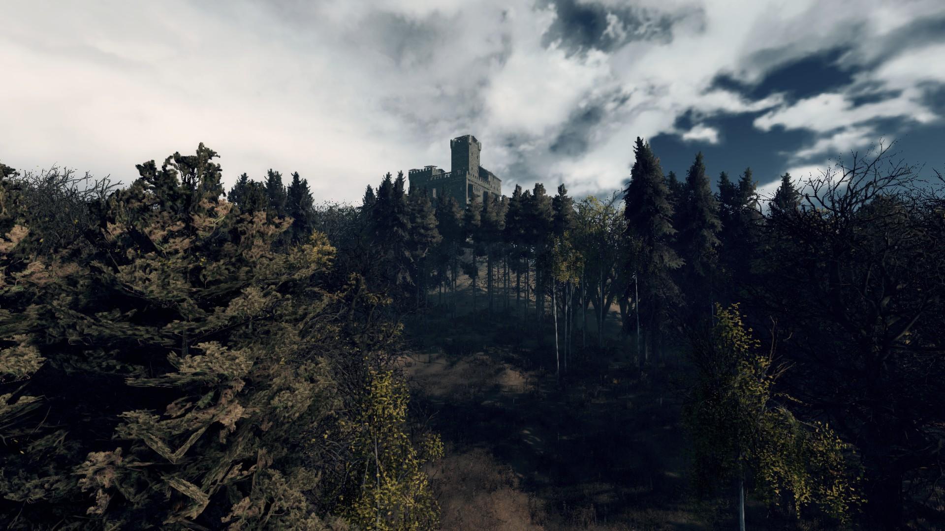 LIF : vue de chateau