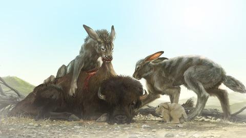 Canis Rabbit