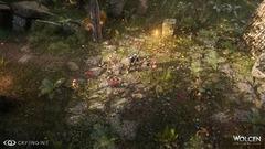 Forêt dense 2