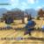 Buildss 20150526 03DangerousDesert