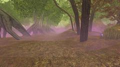 Spiritous Swamp