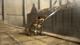Action Action Mikasa3
