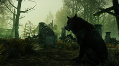 NewWorld Beets Bog Wolf