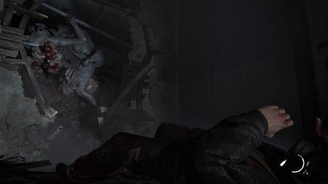 Images de The Last of Us Part II