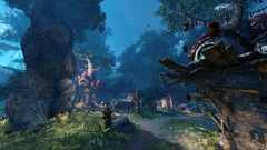 Le MMORPG Astellia s'annonce en version occidentale