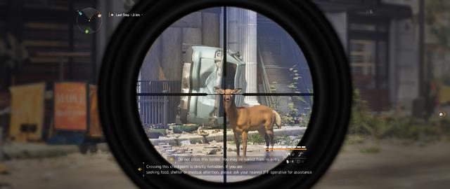 Bambi, arrête de saccager la ville