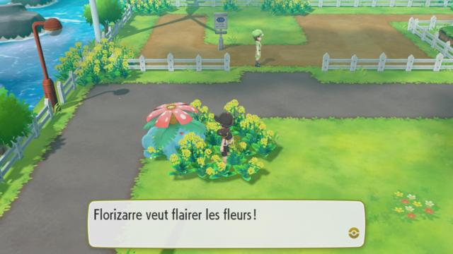 Pokémon hors-ball