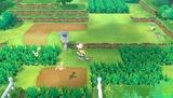 lets-go-pikachu-eevee-06.jpg