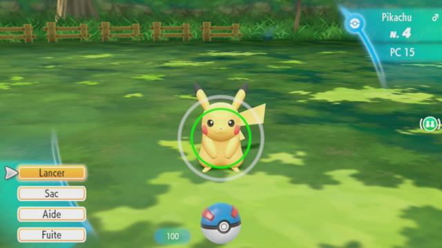 Pokémon sauvage