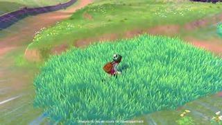 Aucun Pokémon sauvage n'est visible sur la carte