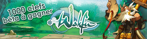 Jeux-Concours : 1000 invitations au bêta-test de Wakfu