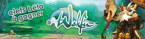 Jeux Concours Wakfu