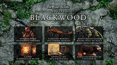 Promo Gamesplanet : -10% sur la prochain extension Blackwood d'Elder Scrolls Online