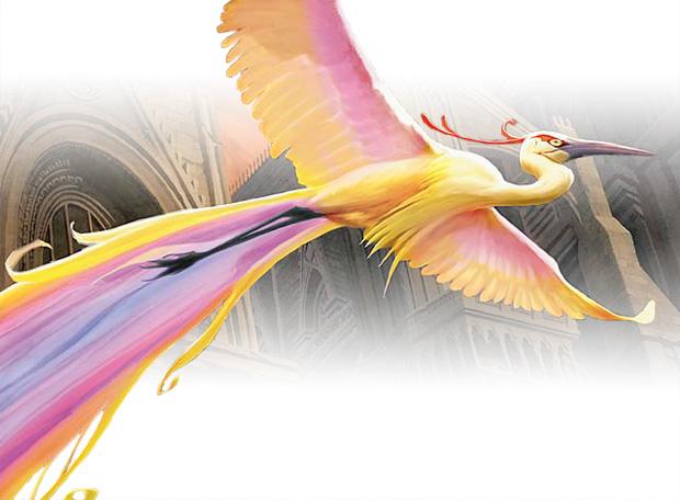 Illustration des Birds of Paradise