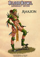 Artwork Amazones