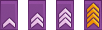 Les 4 différents grades