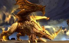 Dragon du Désert